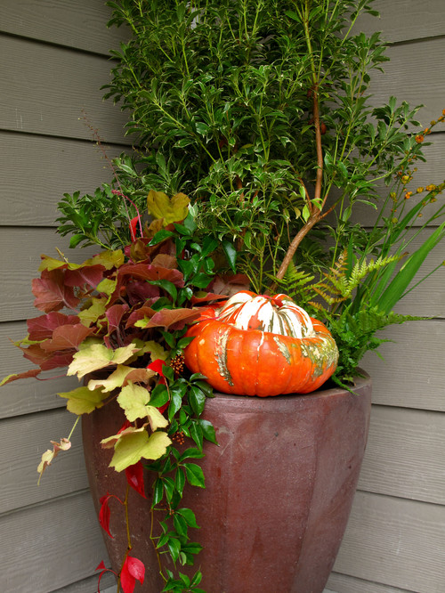 Fall containers - Porch decor - Schlage