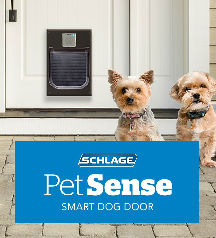 Smart lock - Dogs - Schlage - April Fool's