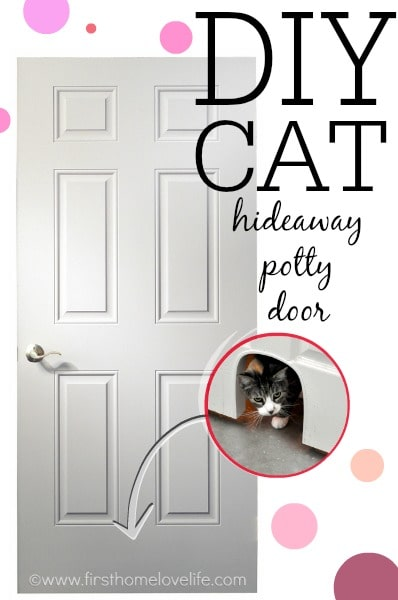 DIY cat door.