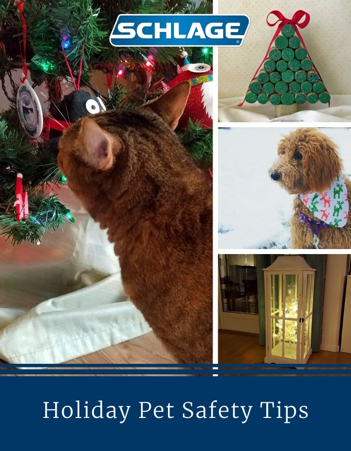 Holiday pet safety tips.