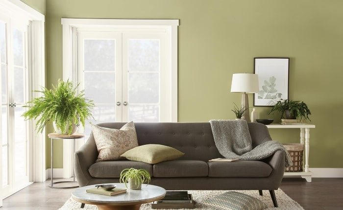 Living room painted in Behr's Back to Nature.