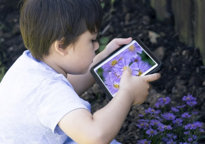 Boy taking photo of flowers with tablet.