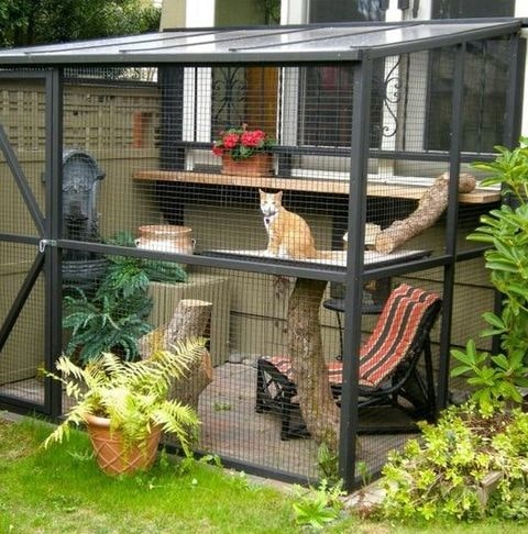 Outdoor catio with lounge chair.