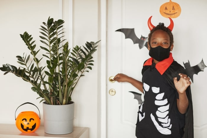 Boy with halloween costume and black mask.
