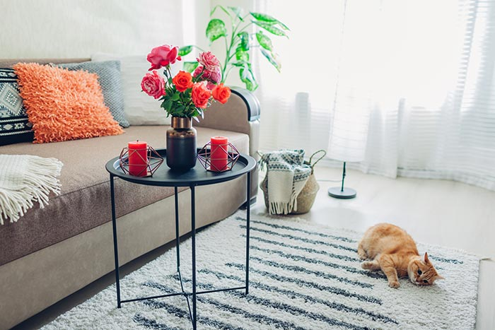 Living room with pink, orange roses and decor and cat playing on rug.