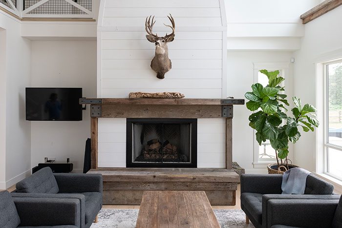 Modern farmhouse living room with fireplace and big houseplant.