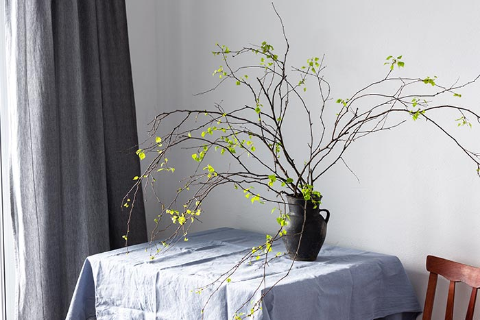 Branches with green buds in vase on table