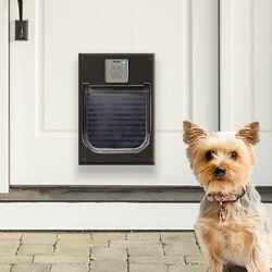Introducing the first-ever smart lock for dogs