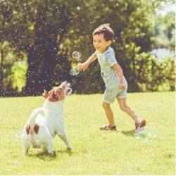 Boy playing outside with dog.
